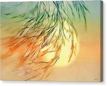 Wispy Sunset-0 Canvas Print