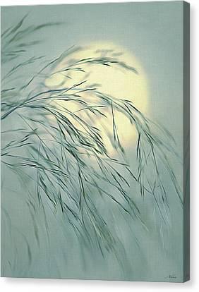 Wispy Sunset-6 Canvas Print