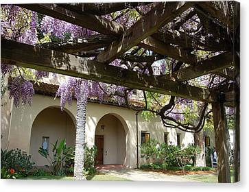 Wisteria Arbor Canvas Print by Carolyn Donnell
