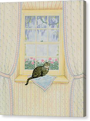 Wisteria Cat Canvas Print
