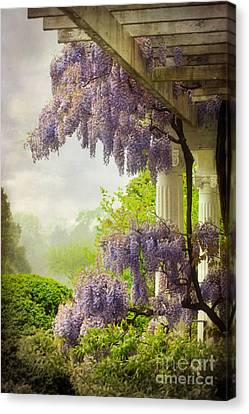 Wisteria In A Spring Shower Two Canvas Print by Susan Isakson
