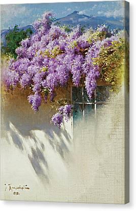 Wisteria In Bloom Canvas Print - Wisteria In Bloom by Iosif Evstafevich Krachkovsky