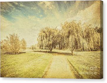 Wisteria In Bloom Canvas Print - Wisteria Lane by Jorgo Photography - Wall Art Gallery