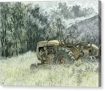 Wistful Canvas Print by David King