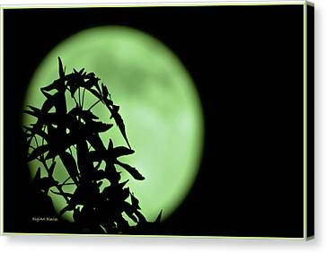 Canvas Print featuring the photograph Witching Hour by DigiArt Diaries by Vicky B Fuller