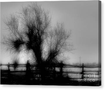 Witching Tree Canvas Print