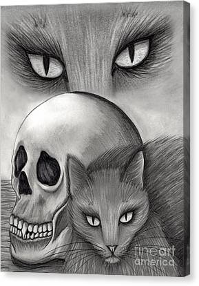 Witch's Cat Eyes Canvas Print by Carrie Hawks