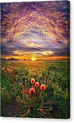 Canvas Print featuring the photograph With Gratitude by Phil Koch