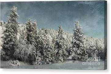With Love - Winter  Canvas Print by Beve Brown-Clark Photography
