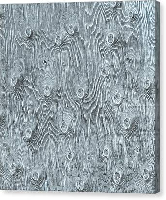 With So Many Bull's Eyes, It Could Be A Target Board.  Canvas Print by Bijan Pirnia