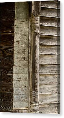 Withered House Decorations Canvas Print by Douglas Barnett