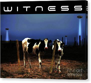 Witness . The Arrival . With Text Canvas Print by Wingsdomain Art and Photography