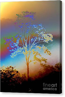 Canvas Print featuring the photograph Witness Tree by Jesse Ciazza