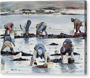 Wnter Clam Diggers Canvas Print by Dan McCole
