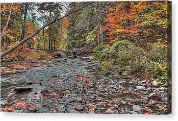 Wolf Creek At Letchworth State Park, Ny Canvas Print by Joe Granita