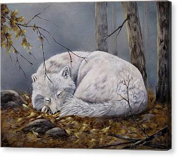 Canvas Print featuring the painting Wolf Dreams by Mary McCullah