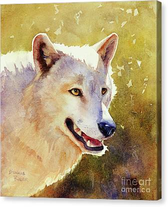 Wolf In Morning Light Canvas Print