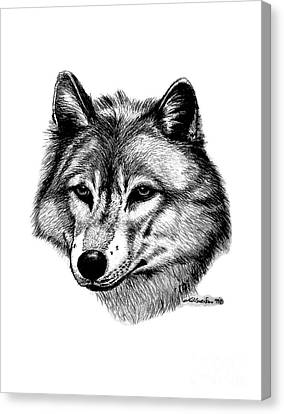 Wolf In Pencil Canvas Print