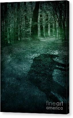 Wolf In The Woods Canvas Print by Mythja Photography