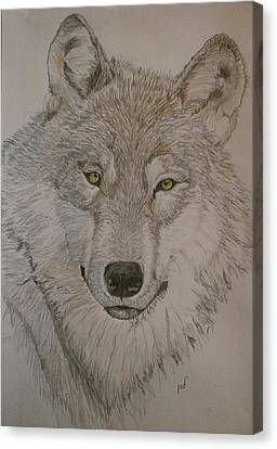Wolf Canvas Print by Maria Woithofer
