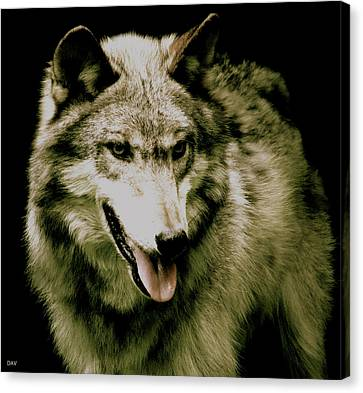 Wolf Of The Night Canvas Print by Debra     Vatalaro