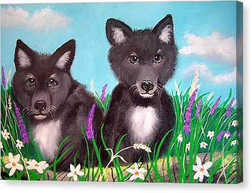 Wolf Pups Canvas Print by Nick Gustafson