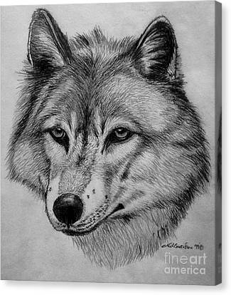 Wolf Sketch Canvas Print