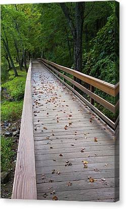 Canvas Print - Wolfes Bridge To Autumn by Karol Livote