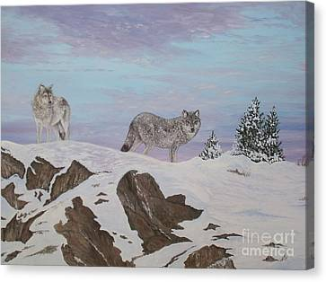 Wolves At Twilight Canvas Print by Patti Lennox