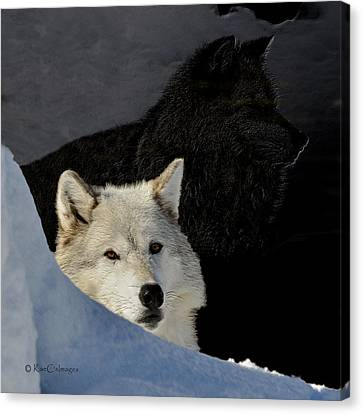 Canvas Print featuring the digital art Wolves, Real And Surreal by Kae Cheatham