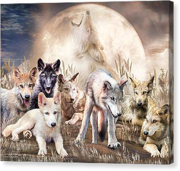 Wolves - Young And Wild Canvas Print by Carol Cavalaris