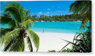 Woman Beach One Foot Island Cook Islands Canvas Print by Panoramic Images