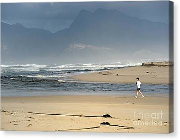 Woman Running In The Morning By Flamingo Lake Estuary Canvas Print by Sami Sarkis