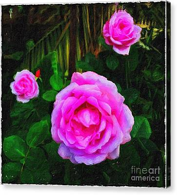 Wonder Of Nature Canvas Print by Blair Stuart