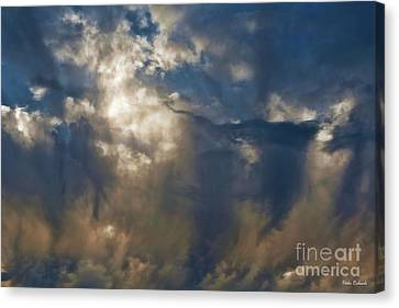Wonderful Day Canvas Print by Blake Richards