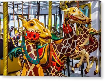 Wonderful Giraffe Ride Canvas Print by Garry Gay