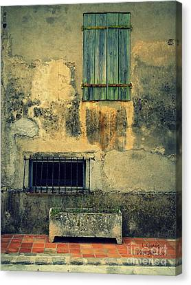 Wonderfully Weathered  Canvas Print by Lainie Wrightson