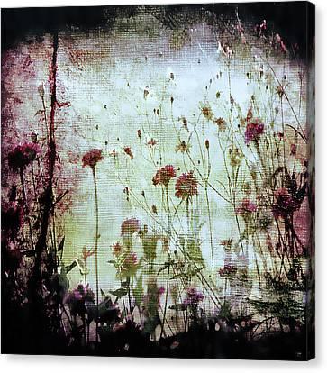 Wonderland Canvas Print by Trish Mistric