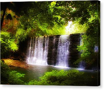 Wondrous Waterfall Canvas Print by Bill Cannon