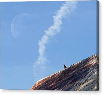 Canvas Print featuring the photograph Wonderstruck by Richard Rizzo