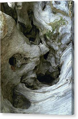 Canvas Print featuring the photograph Wood Abstract by Art Shimamura