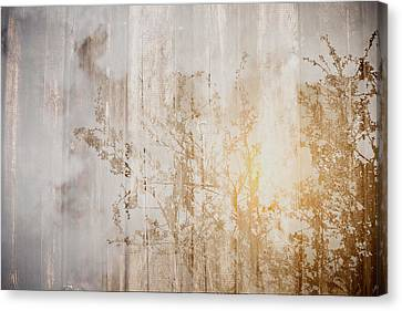 Wood Background With Branches Double Exposure Style With Instagr Canvas Print by Brandon Bourdages
