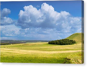Wood Copse On A Hill Canvas Print by John Williams