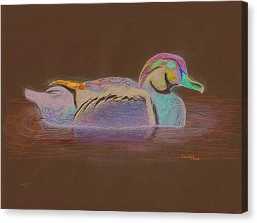 Wood Duck Canvas Print by Cynthia  Lanka