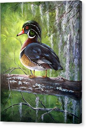 Wood Duck Canvas Print by Mary McCullah