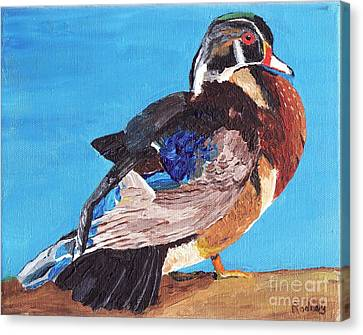 Canvas Print featuring the painting Wood Duck by Rodney Campbell