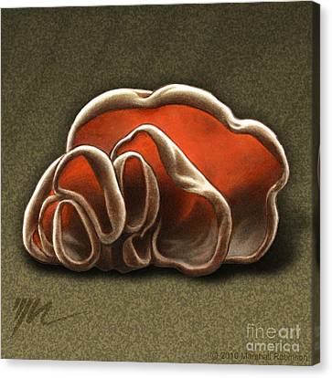 Wood Ear Mushrooms Canvas Print by Marshall Robinson