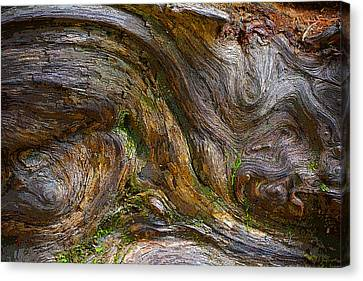 Wood Grain Canvas Print