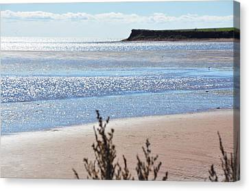 Canvas Print featuring the photograph Wood Islands Beach by Kim Prowse
