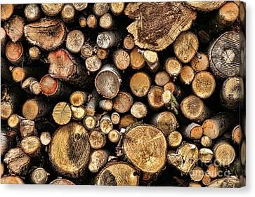 Wood Log Stack Number 144 Canvas Print by Olivier Le Queinec